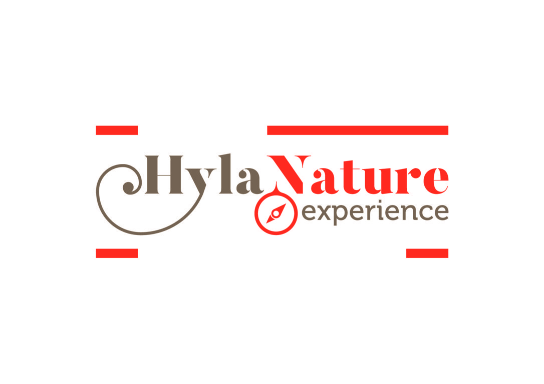 Hyla Nature Def Colore
